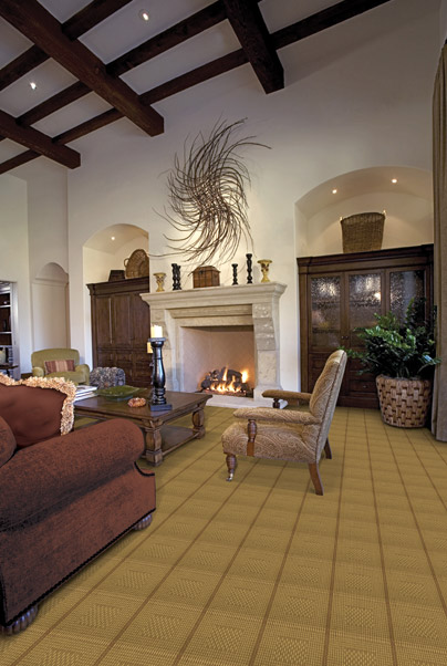 Flooring options for your living room   Indianapolis ...