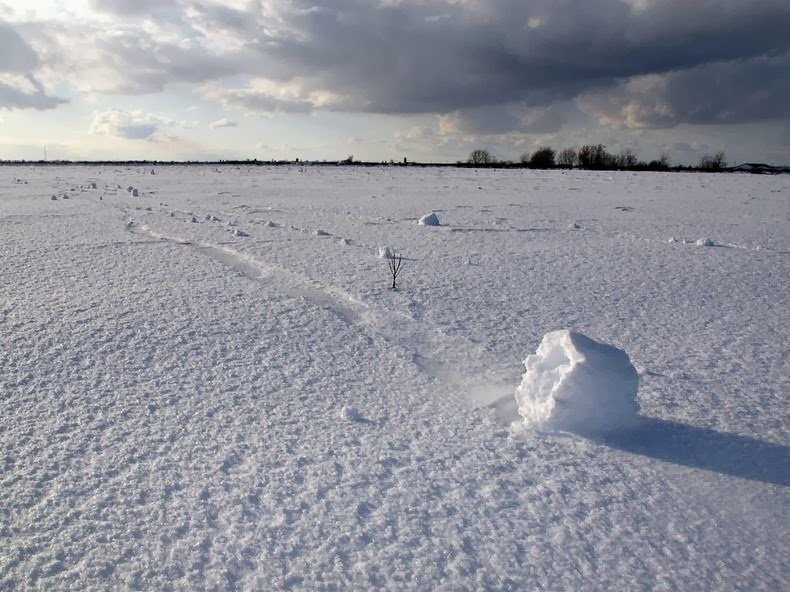 Snow Roller: A Strange Meteorological Phenomenon