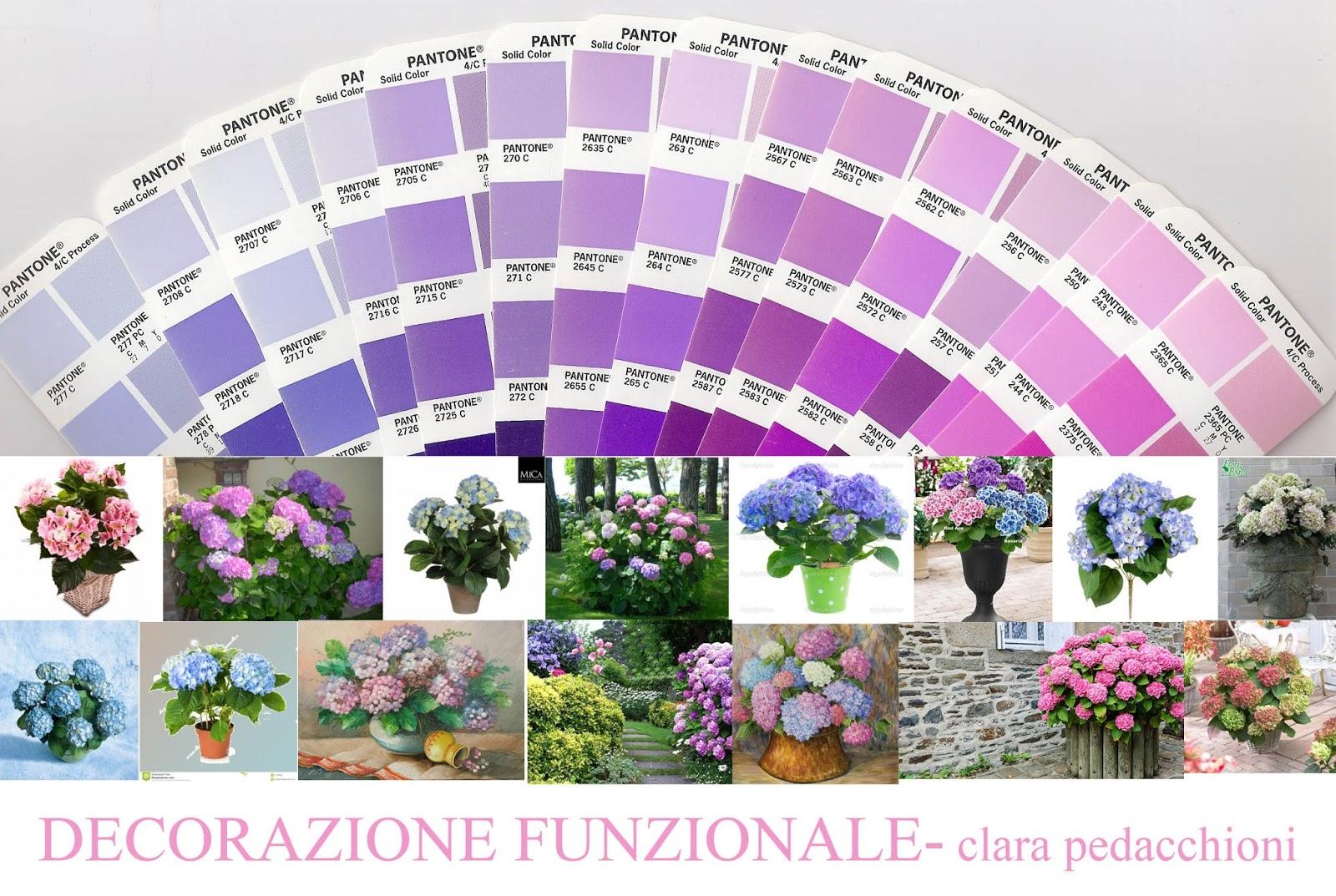 Colori pastello dal rosa al celeste ispirarsi alle ortensie - Ortensie colori ...
