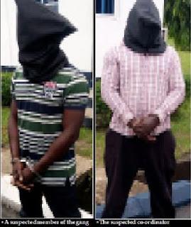 niger delta avengers