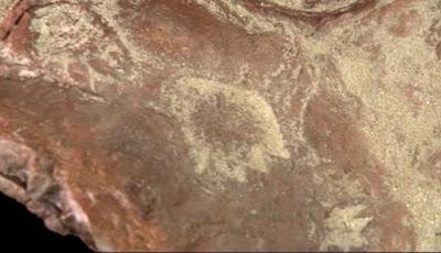 Jejak Dinosaurus Ditemukan di Luar Kampus Goddard NASA