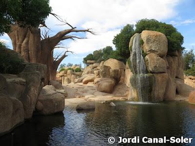Cascada de los elefantes en Bioparc Valencia