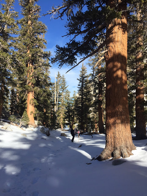Running-Lone-Pine-Lake-Hiking-Kids-Family