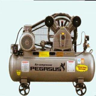Máy nén khí dây đai Pegasus TM-V-0.6/8-330L