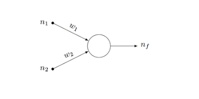 Figura 2; Representación de un perceptrón.