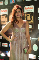 Telugu Actress Aarthi in Deep Neck Backless Golden Gown at IIFA Utsavam Awards 2017 Exclusive 43.JPG