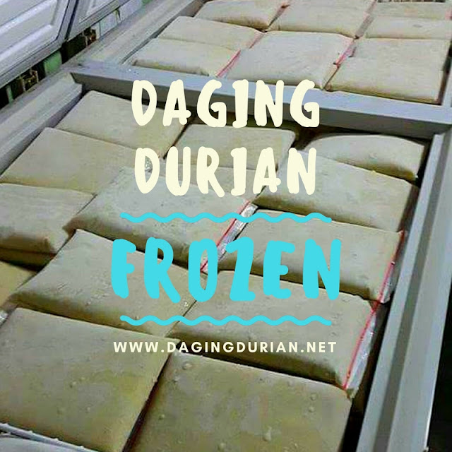 reseller-daging-durian-medan-legit-di-kwandang
