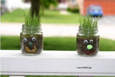 Gunakan toples sebagai pot tanaman.