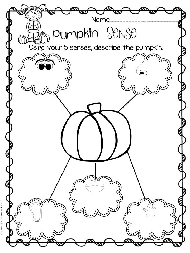 Learning is Something to Treasure: Pumpkin Exploration F-U