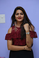 Pavani Gangireddy in Cute Black Skirt Maroon Top at 9 Movie Teaser Launch 5th May 2017  Exclusive 074.JPG