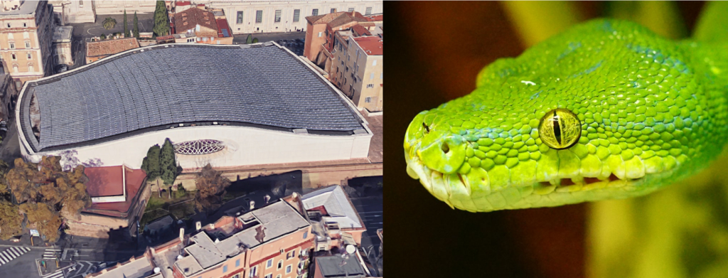 #David_Icke, #build, #snake, #reptilian, #audience, #reptile