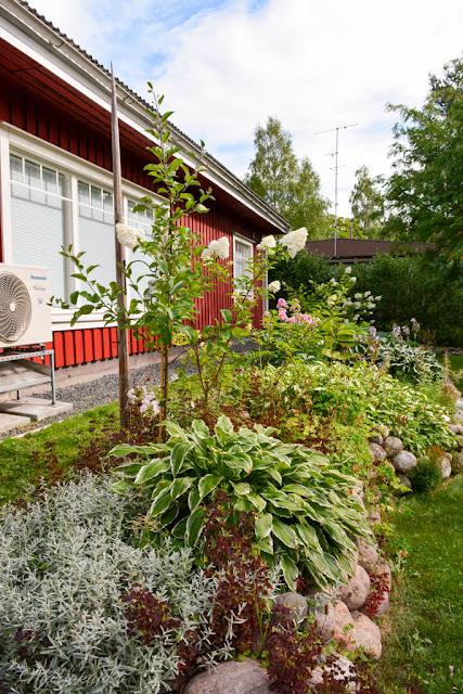 kukkamaa talo puutarha