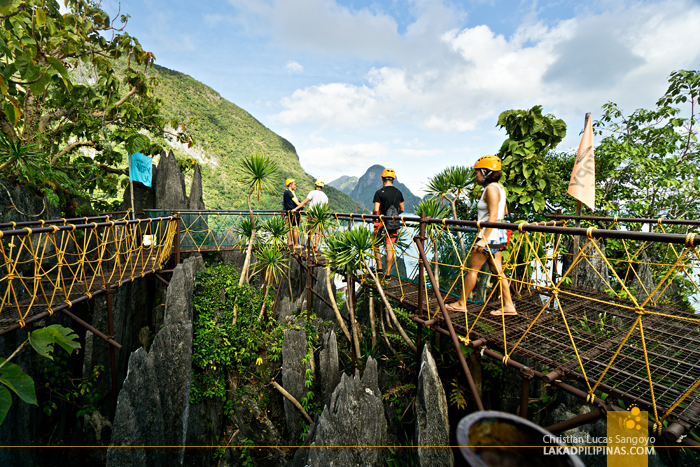 El Nido Canopy Walk Viewing Deck