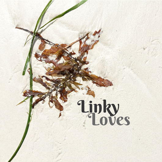 One Big Sunshine Spritzer: LINKY LOVES...