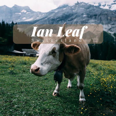 Ian-Leaf-Switzerland