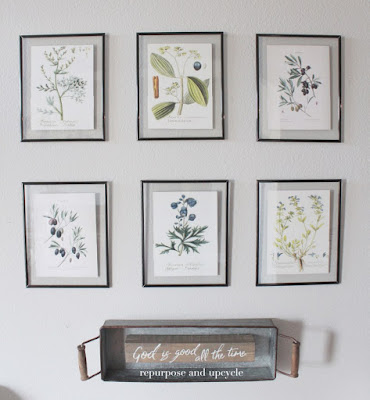 https://repurposeandupcycle.com/diy-framed-botanical-prints-with-free-botanical-printables/
