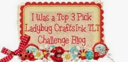 http://ladybugcrafts.blogspot.com/2014/08/august-challenge-june-winner-and-top-3.html