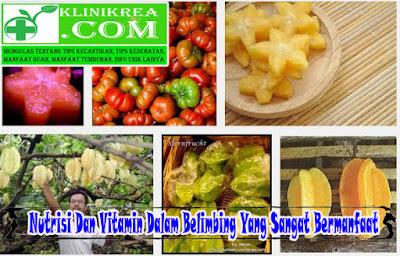 Nutrisi Dan Vitamin Dalam Belimbing Yang Sangat Bermanfaat