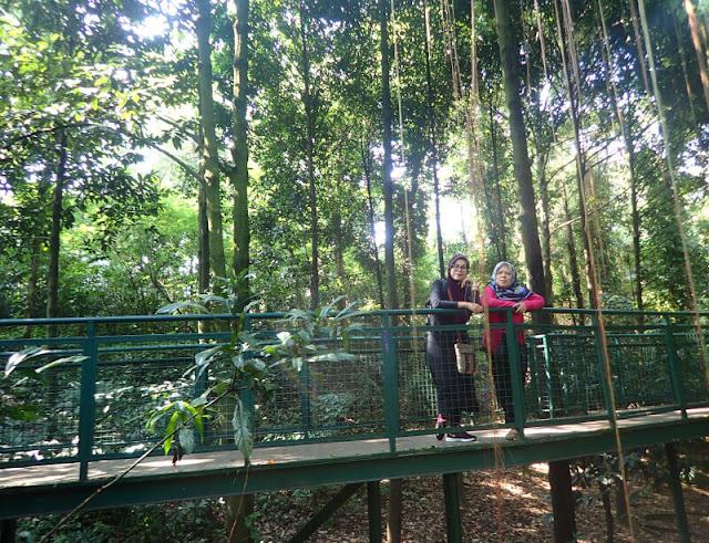 Forest Walk Babakan Siliwangi, Bandung - Setengah Hari Mengelilingi 5 Taman di Bandung Dengan Berjalan Kaki
