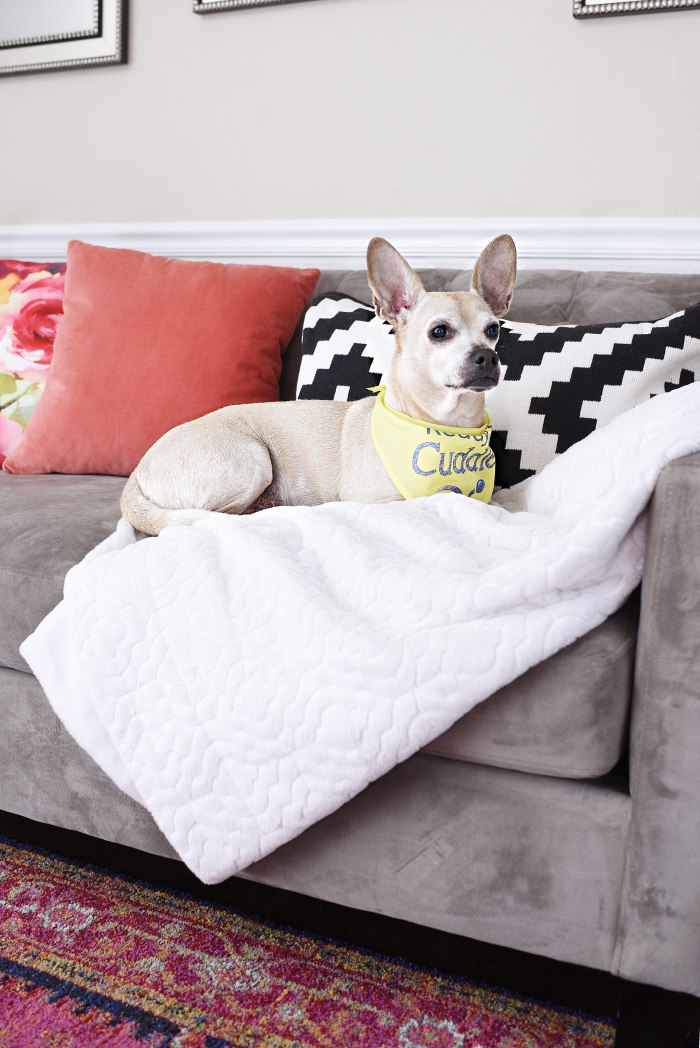 Pee Wee + Tips for shopping for home decor at antique and thrift stores. | via monicawantsit.com
