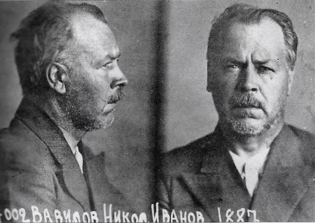 Nikolai Vavilov