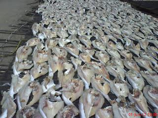Ikan Asin, Jambal Roti