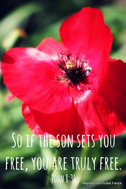 God's Word, Sunday verse, Bible verse, inspiration, freedom, http://bec4-beyondthepicketfence.blogspot.com/2016/07/sunday-verses.html