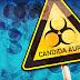 Τι είναι ο πολυανθεκτικός μύκητας Candida Auris, που εξαπλώνεται σε όλο τον κόσμο; Τι γίνεται σε Ελλάδα και Κύπρο;