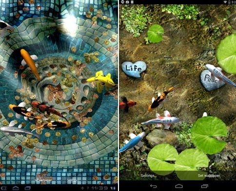download apk wallpaper ikan bergerak