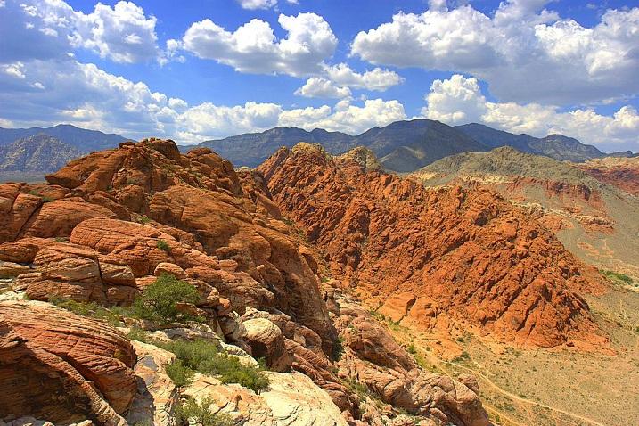 Mojave, Gurun Terluas di Amerika Serikat