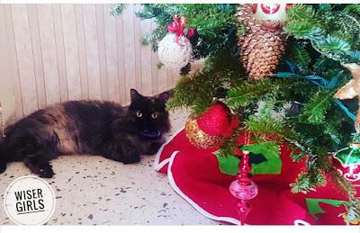 alegre navidad boricua 2016