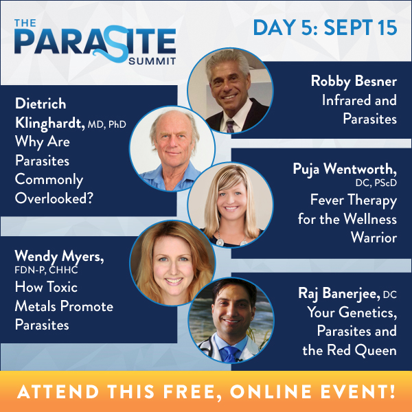Kissy's: The Parasite Summit Day 5: Infrared technology and its