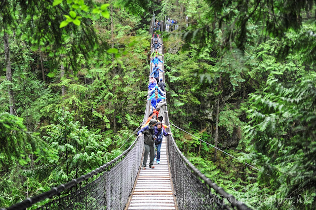Lynn Canyon, 吊橋, suspension bridge