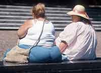 Bakteri Usus Dapat Menyebabkan Obesitas Obat