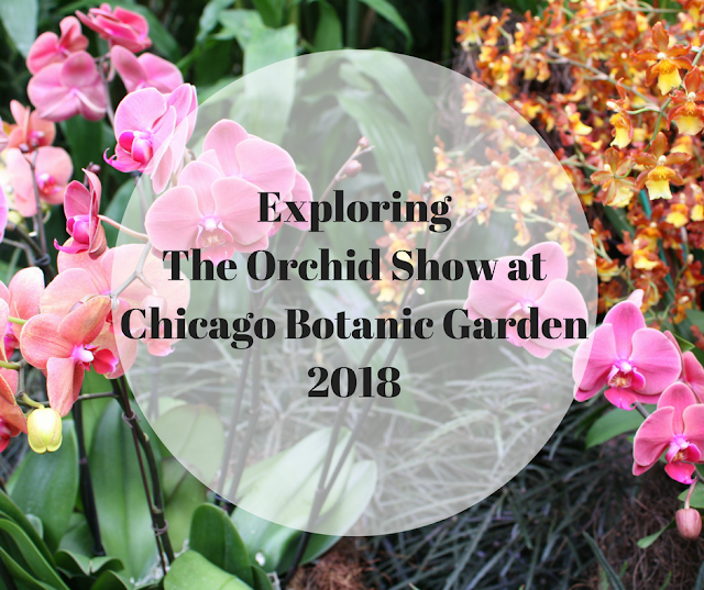 Exploring  Orchid Show at Chicago Botanic Garden 2018