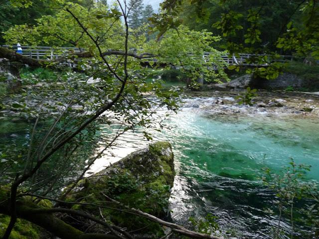 Foto del Río turquesa que alimenta el lago Bohinj. Ruta en autocaravana por Eslovenia | caravaneros.com