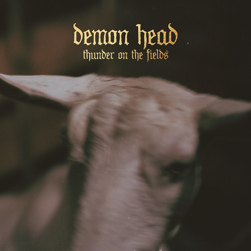 Demon Head - Thunder On The Fields | Review
