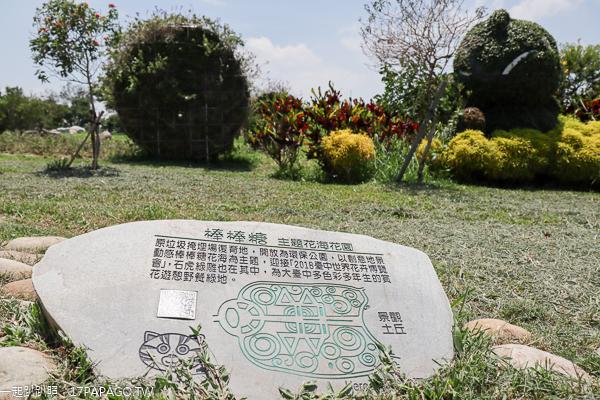 台中后里|后里花田綠廊|環保公園|花田拼布1.2公頃繽紛花海|棒棒糖花海