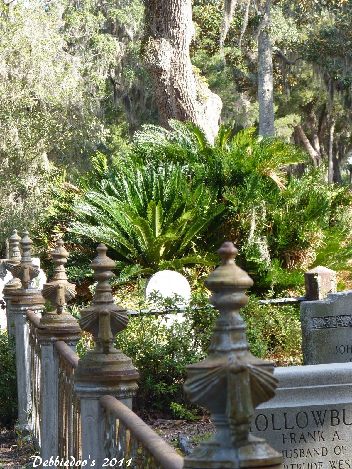 Bonaventure Cemetery In Savannah Ga Photography
