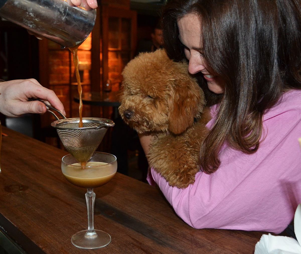 Oodle dog in his mum's arms watches barman pouring an Espresso Martini into a glass