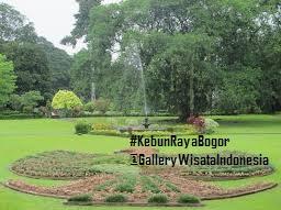 Area Taman Kebun Raya Bogor | Kebun Raya Bogor