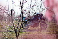 Spring ADV motorcycle