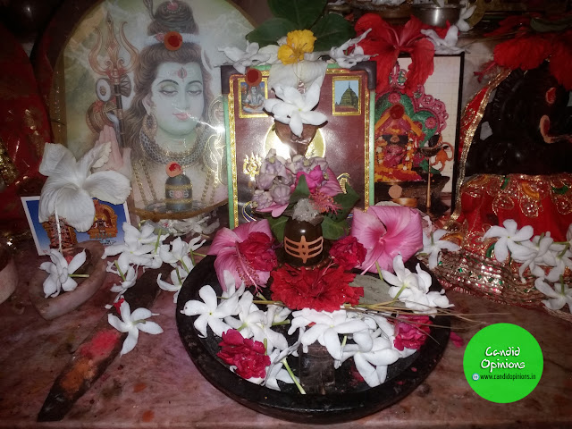 Shivling worshipped on Mahashiratri