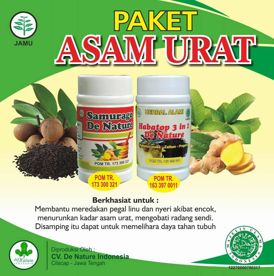 Obat Asam Urat Herbal de Nature