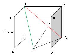 Contoh soal menentukan jarak titik dengan garis pada kubus