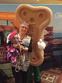 Coco, the Cornish Rex, funny photo with the VitaBone booth, at BlogPaws