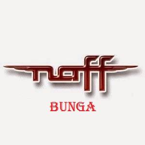 Lirik Dan Kunci Gitar Naff - Bunga