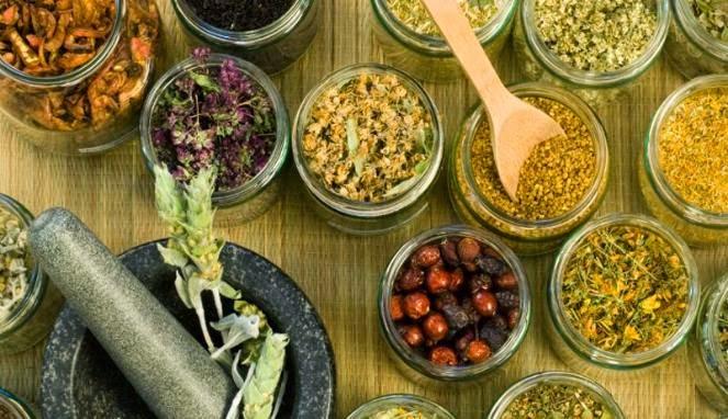 Alasan Kenapa Harus Beralih ke Obat Herbal