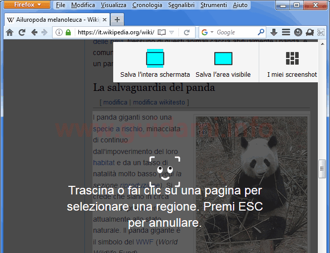 Firefox opzioni cattura screenshot