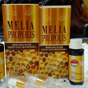 Khasiat dan manfaat melia propolis